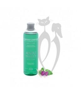 Anju Beauté - Purifiant Camphre 1000 ml - Shampoing assainissant déodorant