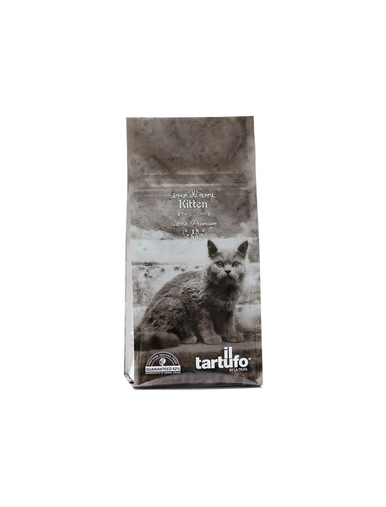 Il Tartufo Kitten